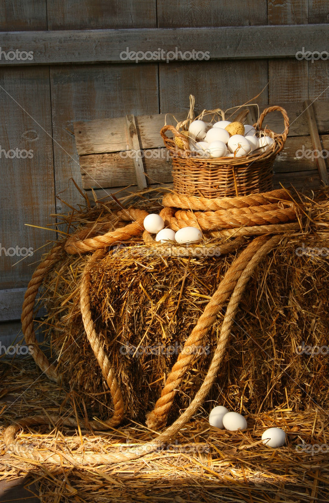 Basket of eggs on a bale of hay in the barn — Stock Photo #3389930