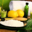 Sea salt, lemons and leaves spa - Stock Photo