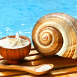 Bath salts and sea shell by the pool - Stock Photo