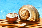 Bath salts and sea shell by the pool — Stok fotoğraf