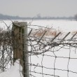 Snow fence - Stock Photo