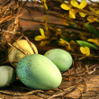 Little Easter eggs lying on old wood — Stock Photo #3402464