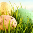 three colored eggs — Stock Photo #3402534