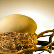 Big golden egg in  bird's nest — Stock Photo