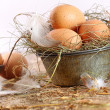 Brown eggs in old tin plate with feathers - Stock Photo