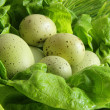 Green easter eggs in lettuce leaves — Stock Photo