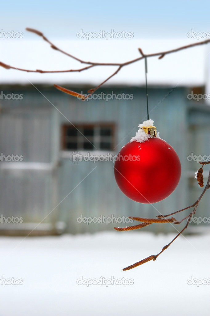 Christmas ball hanging on birch branch  in front of barn — Stock Photo #3402323
