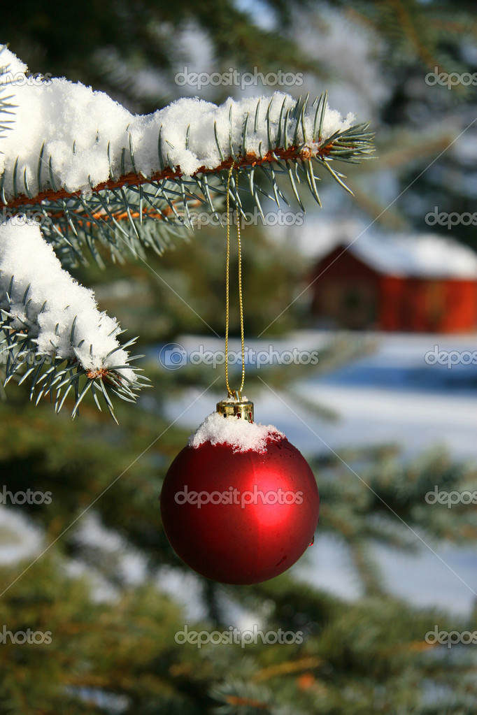 Red Christmas ball hanging on pine branch — Foto Stock #3402335