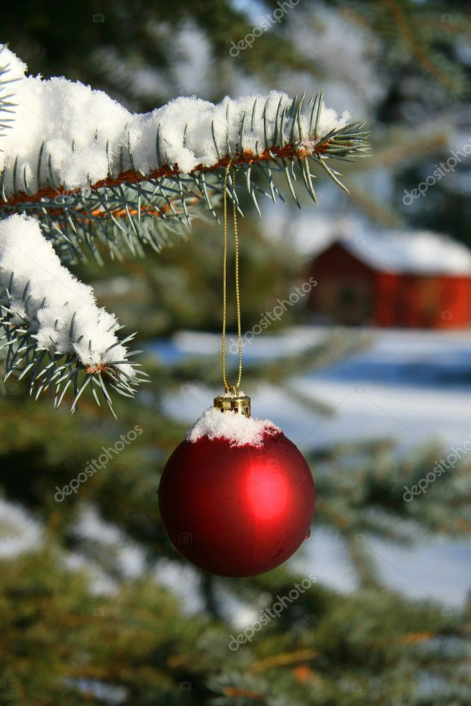 Red Christmas ball hanging on pine branch — Stok fotoğraf #3402335