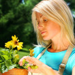 Attractive woman pruning flowers — Stock Photo