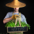 Man with Asian hat gardening - Stock Photo