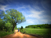 Dusty road on a beautiful spring day — ストック写真