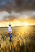 Man standing in a field of wheat — Stock Photo