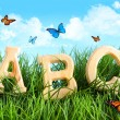 ABC letters in the grass with butterflies - Stok fotoraf