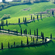 Stock Photo: Tuscany images