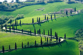 Tuscany images — Stock Photo