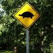 Warning for turtle's crossing. — Stock Photo