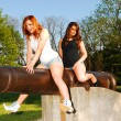 Stock Photo: Sisters on a cannon.