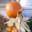 Pumpkin — Stock Photo #3600394