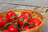 Tomato Basket — Stock Photo