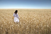 Field of rye and young girl. — Stock Photo