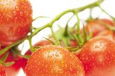 Juicy tomatoes isolated on white — Stock Photo