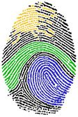 Nature sign Fingerprint — Stock Photo