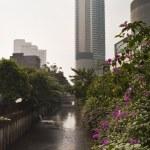 Jakarta Canal — Stock Photo #3856676