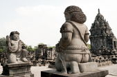 Prambanan Temple — Stock Photo