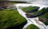 岩质海岸充满绿色海藻 — 图库照片