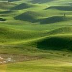 Golf place — Stock Photo