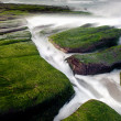 Rocky Seacoast full of green seaweed, long time exposure, Taiwan, East Asi - Stock Photo