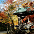 Stock Photo: Temple with maple