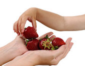 Mother gives handful strawberries — Stock Photo