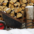 Wheelbarrow with red wheel on firewood stack background — Stock Photo