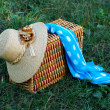 Stock Photo: Straw hat, basket and neckerchief