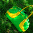 Green summer bag on grass — Stock Photo