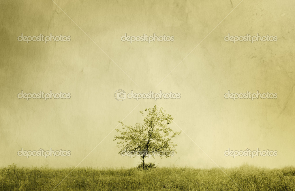 trees nature gift to man essay