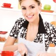 Foto Stock: Housewife