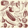 Royalty-Free Stock Векторное изображение: Vegetable set.