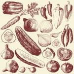set di vegetali — Vettoriale Stock
