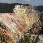 Grand Canyon Of Yellowstone — Stock Photo
