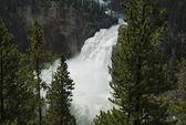 Upper Fall, Yellowstone NP — Stock Photo