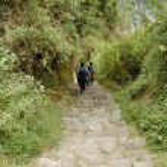 Inca trail — Stock Photo