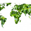 World map of green leaves — Stock Photo #3202694