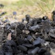 Coal on grass — Stock Photo