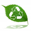 Recycle sign on green leaf — Stock Photo