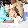 Stock Photo: Family playing in snow