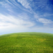 Green grass, blue sky in fish-eye lens — Stock Photo #4288248