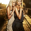 Stock Photo: Two elegant blond women